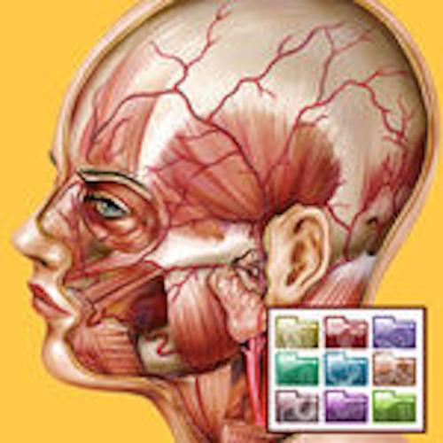 Atlante di Anatomia - Sezioni è un app indispensabile per chiunque eserciti o studi professioni sanitarie. Qui in versione in-app purchase